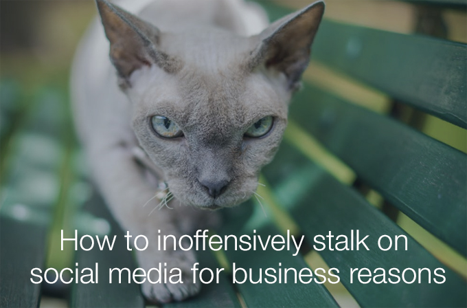 stalk on social media